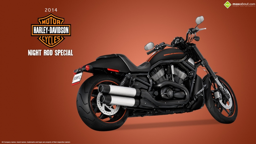 950898_Harley-Davidson-Night-Rod-Special.jpg