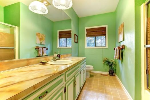 Foto mural cuarto de ba o verde casas for Cuartos de bano verdes