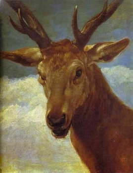 Diego_Velazquez_-_Head_of_a_Stag.JPG