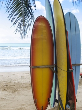 Tablas_surf_muralesyvinilos_46777857__Monthly_L.jpg