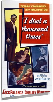 67024_Film_Noir_Poster_-_I_Died_a_Thousand_Times_01.jpg