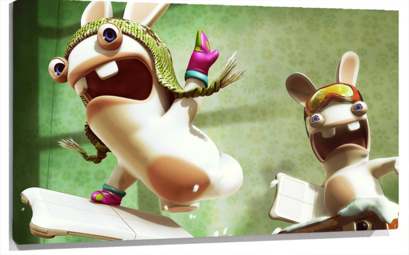 950143_Raving_Rabbids.jpg