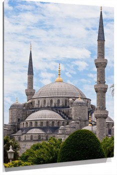 Catedral_estambul_muralesyvinilos_24348575__Monthly_XL.jpg
