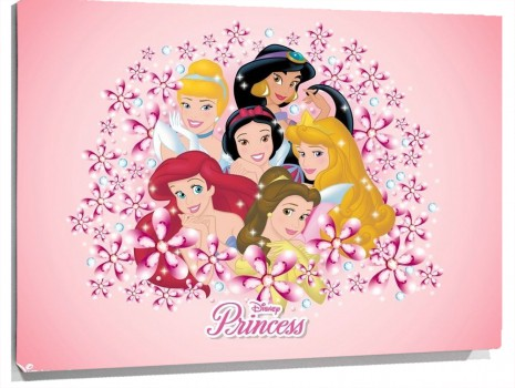 Disney-Princesses-disney-princess-1989369-1024-768.jpg