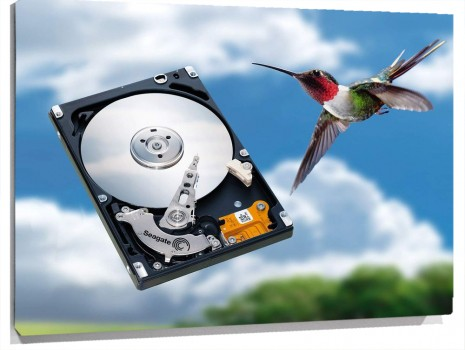Seagate_Technology.jpg