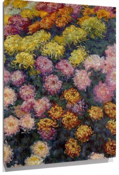 bed_of_chrysanthemums.jpg