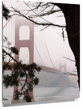golden_gate_ramamuralesyvinilos_2322121__M.jpg