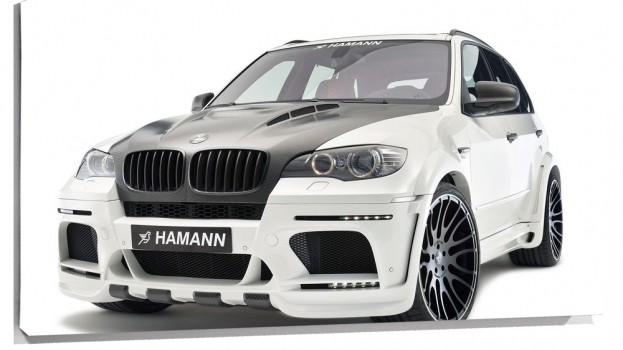hamann-flash-evo-m-11.jpg