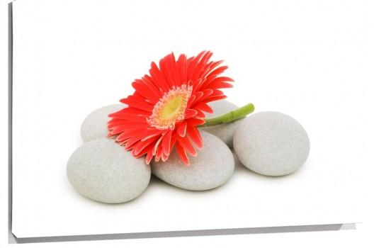 piedras_blancas_y_flor_muralesyvinilos_13502203__XL.jpg