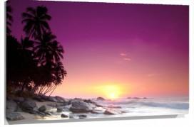 Murales Atardecer morado playa