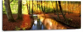 Murales bosque con rio panoramica