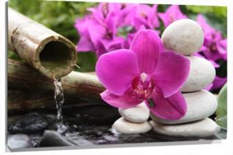 Lienzo Flores  caña con agua