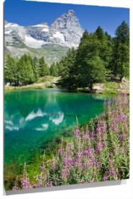 Lienzo Lago y montaña nevada