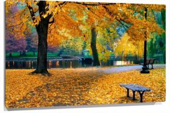 Lienzo Parque otoño
