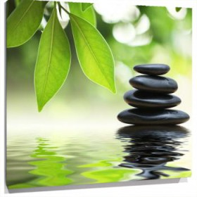 Lienzo Piedras negras y hojas verdes reflejadas en el agua