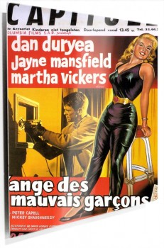 67007_Film_Noir_Poster_-_Burglar,_The_01.jpg