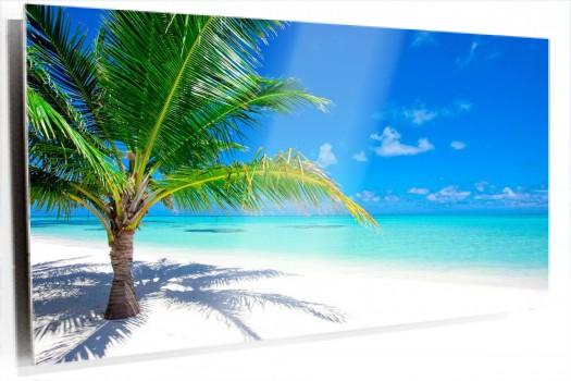 Playa_palmera_muralesyvinilos_25878341__Monthly_XXL.jpg