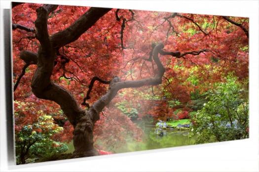 arce_japones_muralesyvinilos_55633.jpg
