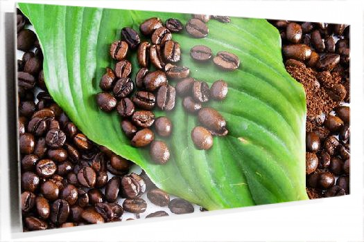 cafe_y_clorofila_Fotolia_4229764_Subscription_XL.jpg