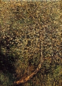 apple_trees_in_blossom_by_the_water.jpg