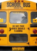school_bus_muralesyvinilos_93006__L.jpg