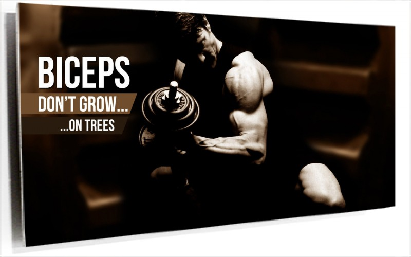950170_biceps-dont-grow-on-trees.jpg