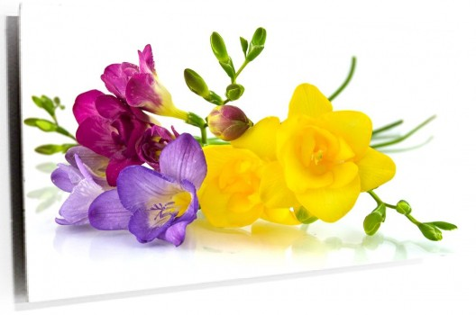 Flores_de_colores_muralesyvinilos_38175049__Monthly_L.jpg