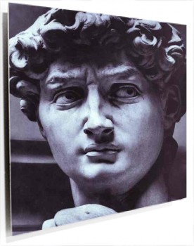 Michelangelo_-_David_(detail).JPG