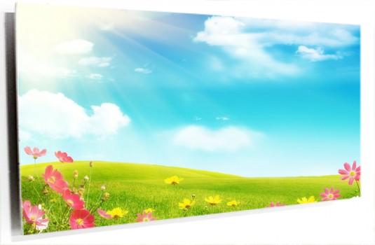 campo_con_flores_muralesyvinilos_14985009__XL.jpg