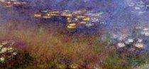 Murales agapanthus