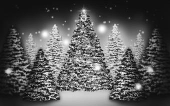 Murales Arbolada de Navidad en Blanco y Negro