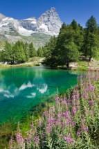 Murales Lago y montaña nevada