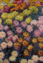 Murales bed of chrysanthemums